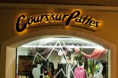 cours_sur_patte1
